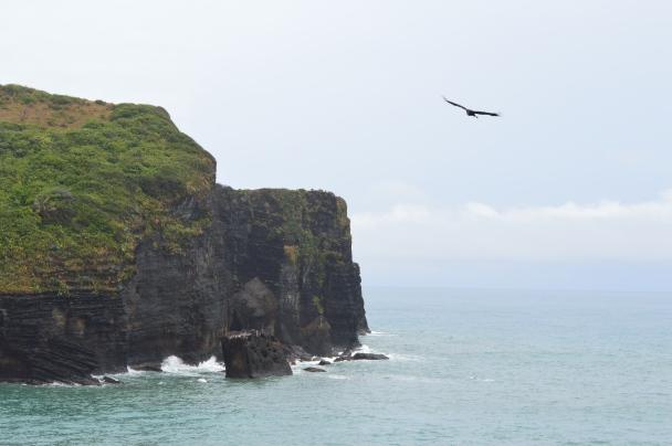 Roca Partida, zona volcánica y playa
