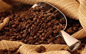 El café de Veracruz ocupa los primeros lugares en concursos nacionales.