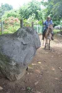 Un nuevo monumento colosal en la región de ´los habitantes del hule´ fue encontrada por campesinos.