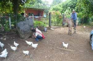La piedra, con tallados olmecas, está en el rancho El Repartidor, del municipio de Mecayapan en la comunidad Los Laureles.