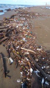 Son varios kilómetros del litoral donde se encuentra lleno de basura, materiales de plástico, vidrio, latas... y hasta palizada con lirio acuático.