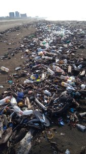 En estas condiciones se encuentran las playas de Coatzacoalcos.