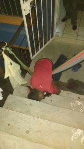 Homicidio en Punta Verde, del Fraccionamiento de Cosoleacaque.
